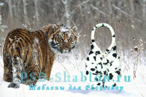 Детский шаблон для Photoshop - Малыш с тигром