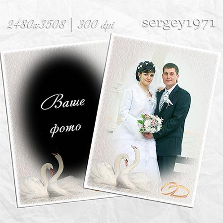 Свадебная рамка psd - Два влюбленных лебедя